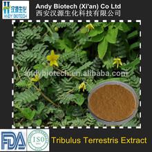 High Quality 40% Saponins Tribulus Terrestris Extract Powder