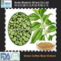 100% 자연 녹색 커피 콩 추출물