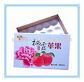 Descartável papel maçã caixa de embalagem de frutas