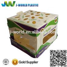 pp corrugated plastic storage case/box/bin for fruits