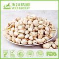 salés pistachino noix avec la coquille
