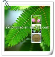 Pure Natural Mimosa Extract / sensitive plant