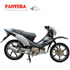PT110-R Chinese New Model 110cc Good Quality Cheap Brand Motorcycle