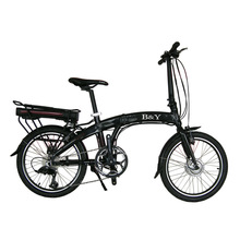 B&Y New model chinese electric bike lithium battery TDN-010
