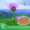 Natural 100% Rhaponticum Carthamoides Extract