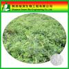 Cycloastragenol 10%, 20%, 50%, 95%, 98%, astragalus extract, Cycloastragenol