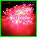 24v tensão luz líquida de natal luzes led luzes de natal/diodo emissor de luz de férias/led da bateria luz decoração de pimenta