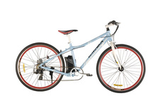 28inch cargo electric bike with lithum battery for disc brake of 250W brushless moter