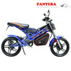 PT-E001 Portable Good Quality Hot Sale Nice Durable Electric Foldable Scooter
