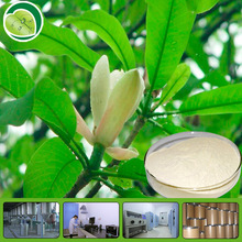 High Quality organic magnolia bark /extract Magnolia Bark Extract