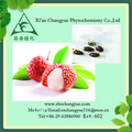 Natural de sementes de lichia suco/sêmen litchi extrato de pó