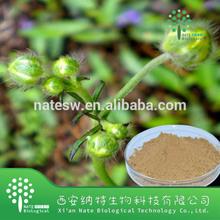 Ranunculus Ternatus Extract 3% 4% 5%Alkaloids