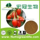 GOJI BERRY EXTRACT / NINGXIA Gou Qi Zi, Wolfberry/certified organic goji berry