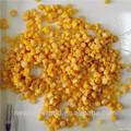 Alta calidad en lata dulce de maíz en salmuera