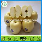 new crop fresh apple price