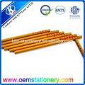 أقلام مخصصة المطبوعة/ قلم الترويجية/ أقلام خشبية مستديرة