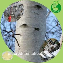 pure white willow bark/white willow bark extract salicin/white willow bark extract