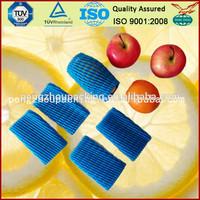 Pumpkin Packing EPE Foam Net Sleeves for fruits