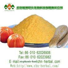 Pumpkin powder 100-120mesh and 95% dry, Pumpkin powder