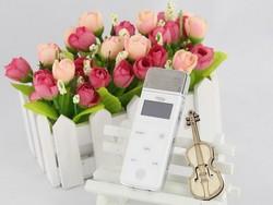 Hot sell Popular Christmas gift Android mini pocket microphone karaoke player