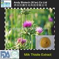 Pure natural 10 anos fornecedor de ouro 80% uv milk thistle extrato da semente
