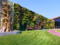 viveiro bonsai substraten solo de argila para a vertical de parede verde