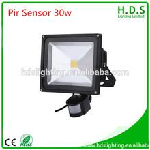 Highly cost effective 12v ac/dc 30w ip65 led flood light bulb with pir sensor