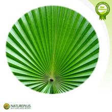 Intestine & Stomach Health Saw Palmetto Powder/Saw Palmetto Extract