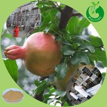 Pomegranate leaf extract powder ellagic acid pomegranate extract powder
