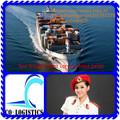 Mare di trasporto container dalla cina a puntarenas- vincent