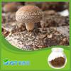 High quality and organic Shiitake mushroom extract