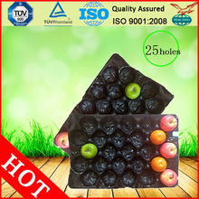 Safety Food Grade Custom Design Plastic Cheap Fruit Tray
