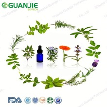 GMP Approved Natural saw palmetto extract