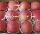 Pome Fruit Product Type and Fresh Style Fresh Fruit