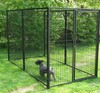 Wholesale Retail galvanized steel welded dog kennel cages