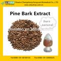 Fonte de casca de pinho p. E e., opc, pine bark extract
