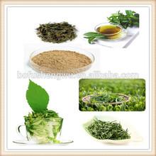 green tea extract/green tea extract powder/zenergreen super green tea extract
