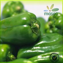 Freeze Green Bell High Quality Green Pepper / pepper seeds / green pepper allergy