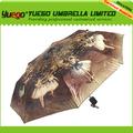Las niñas imagen del sexo, pintura de la lona, retráctil plegable paraguas