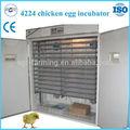 de alta calificación de turquía baratos incubadora del huevo