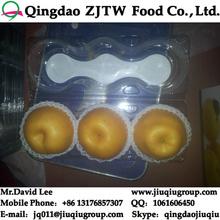 Fresh Singo Pear Price & Fresh Ya Pear Price, Shandong singo pear price with good quality