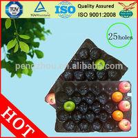 PP BlackFruit Tray For Pear/Fresh Fruit Export Packaging