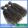 China Factory hair Supplier Virgin Brazilian Kinky Curly Hair
