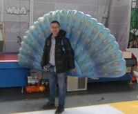 2011 Special wings Venetian masquerade ball/halloween masquerade dance Venice /party/bar inflatable wings MK-4