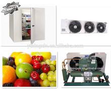 Wholesale!! Industrial freeze room/ fruits cold storage room/deep freezer cold room.