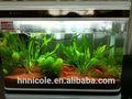 brevetto cinese buona qualità nutrienti syderolitefor acquario artificiale pesce di allevamento