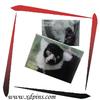 customized metal art craft animal souvenir fridge magnet