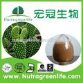 100% природных экстракт кактуса hoodia