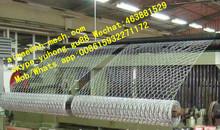 hexagonal chicken wire mesh chicken coop net
