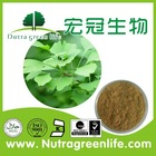 Natural ginkgo biloba extract powder with sample available
